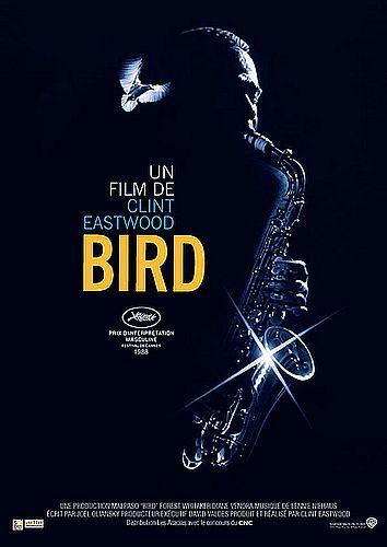 bird-film2